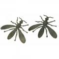 orecchini ape Fly