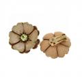 Coro flower